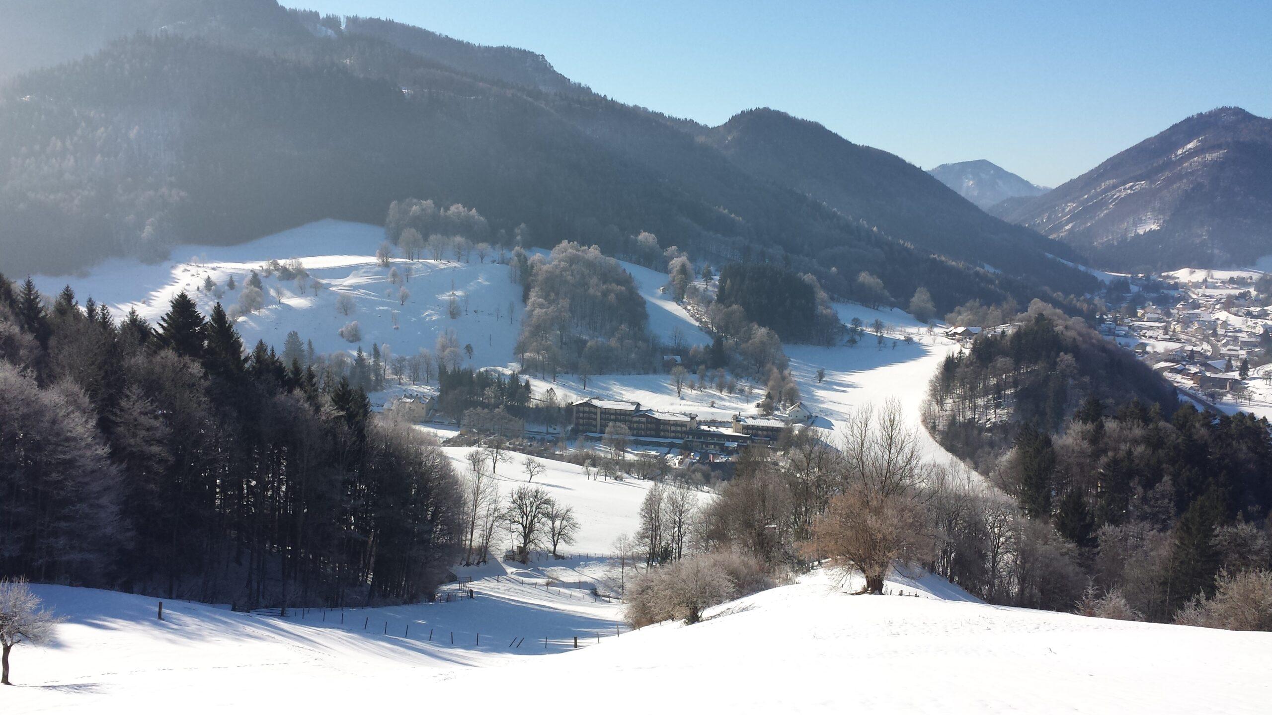 Winterlandschaft Niederösterreich Urlaub